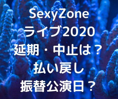 セクゾライブ2020福岡!コロナで延期・中止は?チケット払い戻しや振替公演日はいつ?